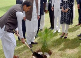 The opening ceremony of Spring Tree Plantation Campaign in Mianwali.
