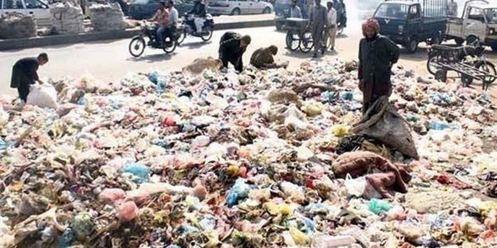 SHC directed the petitioner to make Solid Waste Management a party to the petition against garbage.