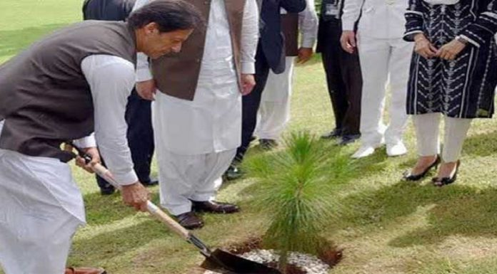 Prime Minister Imran Khan launch the biggest tree plantation campaign.