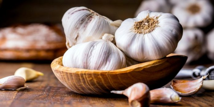 Garlic is highly valued for its numerous health benefiting properties.
