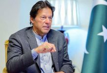 PM Imran is extremely concerned about the growing vulgarity in the society.