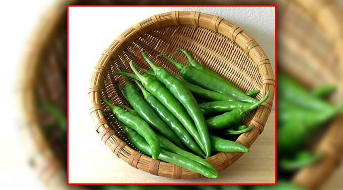 Green chilies are beneficial for health as it contains Vitamins A, B6 & C.