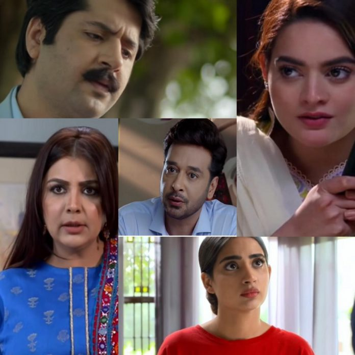 Pakistan drama industry actor's best performances of 2020.
