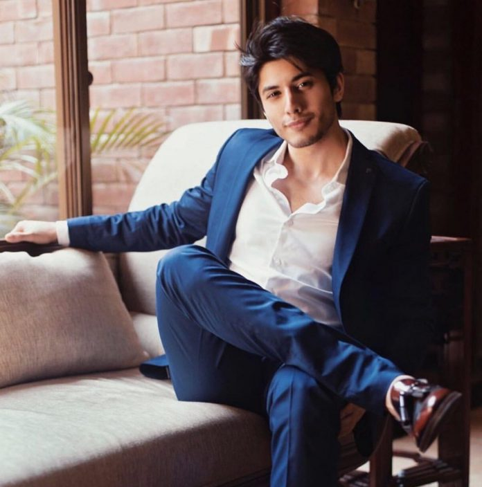 Danyal Zafar is working on his first Upcoming Serial 'Tana Bana.'