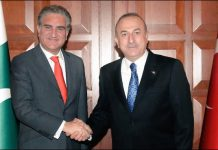 Turkey and Pakistan Discusses Plans to End Israeli Brutality in Palestine