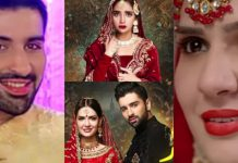 Upcoming Drama Mujhe Wida Kar, Cast, Production, Timings & Details
