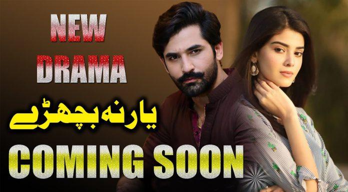 Yar Na Bichrey, Mirza Zain Baig & Zainab Shabbir's Upcoming Project