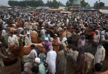 Eid-ul -Azha, NCOC issues COVID protection guidelines