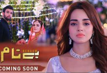 Upcoming Drama Benaam - Cast, Story, and Timing.